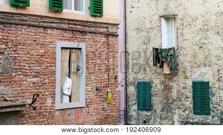 Statue In Window Of Residential House In Siena