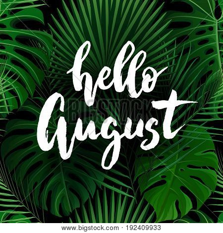 Hello August brush lettering. Vocation cards, banners, posters design. Green palm tropical leaves background. Handwritten modern brush pen calligraphy. Vector illustration stock vector.
