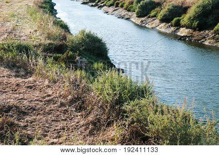 Riverbank Of Ribeira De Quarteira In Vilamoura
