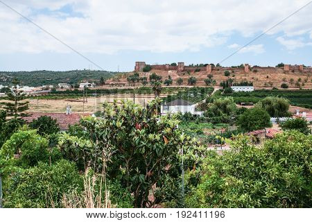 View Of Castle Of Silves From Rural Gardens