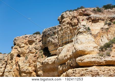 Eroded Sandstone Rock On Beach Of Atlantic Ocean