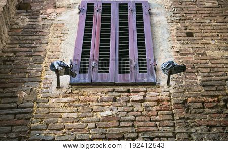 Pigeons Near Closed Window Of Medieval House