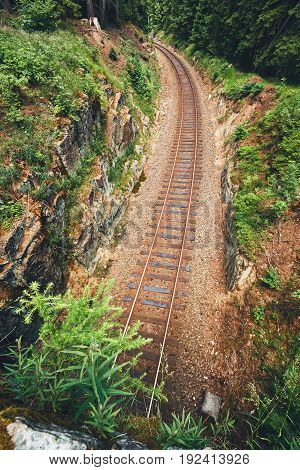 Railroad Track In The Middle Of The Forest