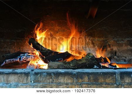 Roast bright flame in the fireplace. Burning firewood.