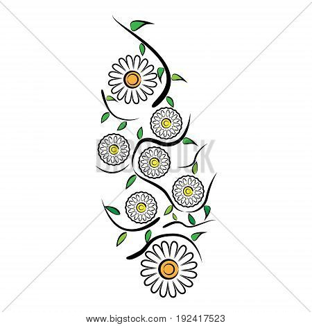 Vector illustration of a pattern of chamomile flowers leaves and meandering stems on a white background