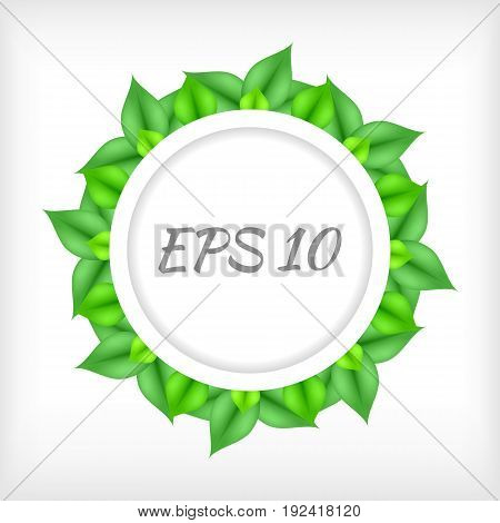 Vector green leaves vector border. EPS 10.