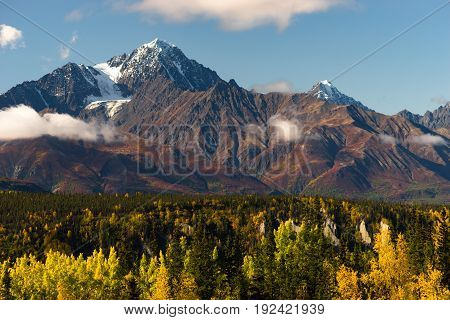 Fall is approaching in the Chugach National Forest Alaska