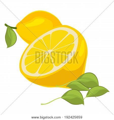 Fresh lemons with leaves isolated on a white background