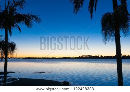 Beautiful morning colors across bay Tauranga New Zealand sunrise framed by palm trees.