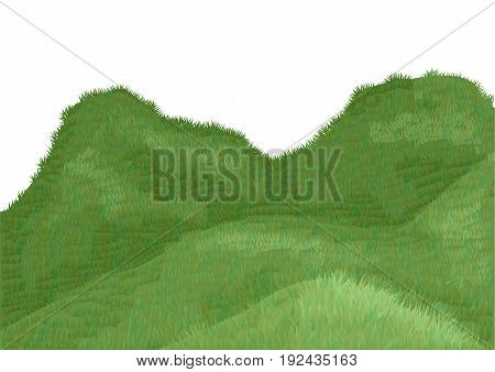 green field isolated on a white background