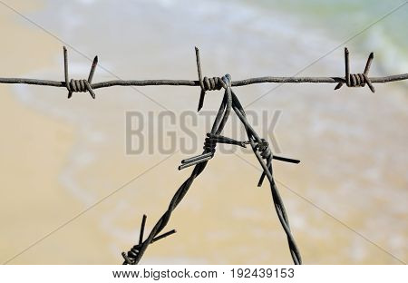 Fragment of the barbed wire fencing of the entrance to the sea summer day