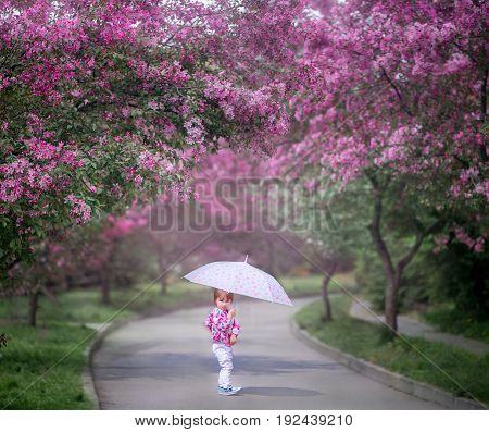 Little happy girl with umbrella  under blooming crabapple tree with pink flowers