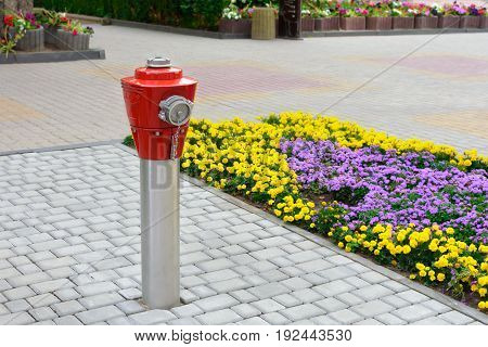 Red fire hydrant on metal resistance on the pavement in the city. Near the flower bed .