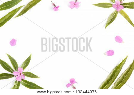 Floral background with a blank space for a text.