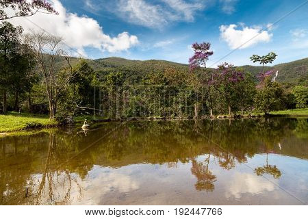 The nature in Matutu, state of Minas Gerais, Brazil