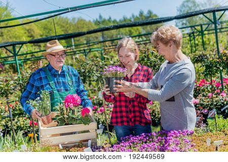 Grandmother and granddaughter buying potted flowers in the gardening center with assistance of a senior experienced gardener. Family and gardening concept.
