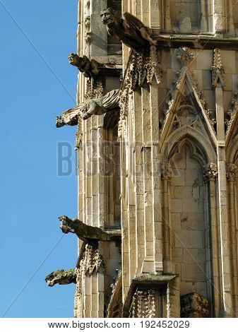 medieval gargoyles and grotesques on york minster