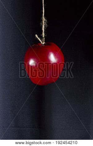 Red ripe apple on a rope on a dark background