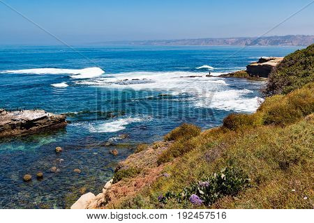 Foliage on the side of a cliff overlooking natural rock formations and crashing ocean waves at La Jolla Cove.
