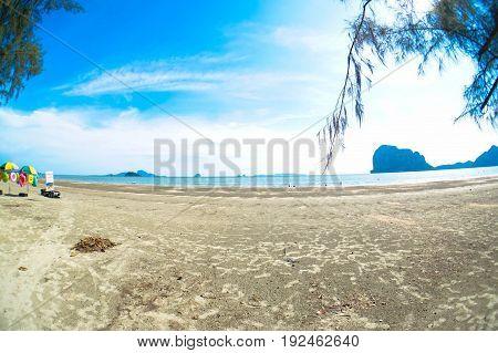 beach seashore blue sky sand floaters trees