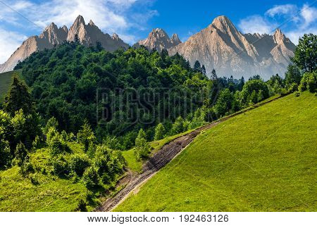 footpath uphill through forest on hillside. composite landscape with High Tatrs peaks