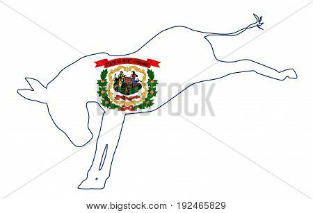 The West Virginia Democrat party donkey flag over a white background