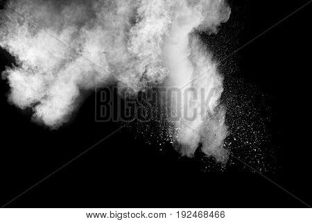 white Powder explosion on black background. White dust explode.