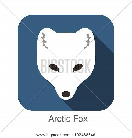 Arctic fox cartoon face flat icon design
