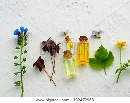 Bottle Of Essential Oil With Fresh Herbal Setup With Flat Lay On White Wooden Table.