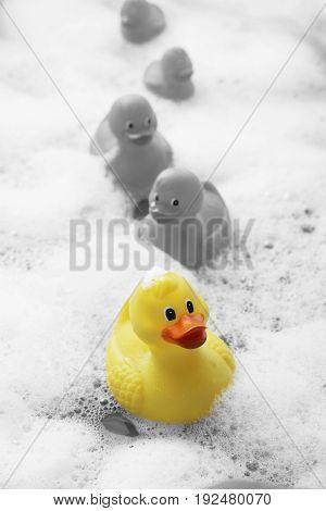 Rubber ducks in bubble bath