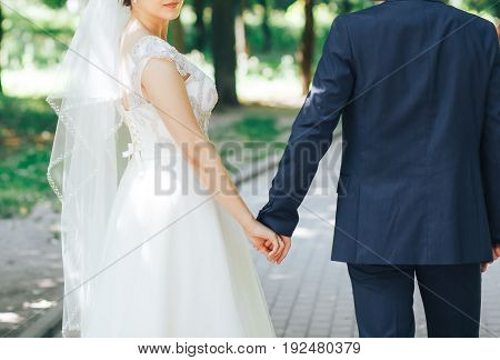 The bride and groom walk through the Park hand in hand. Happy bride and groom holding hands
