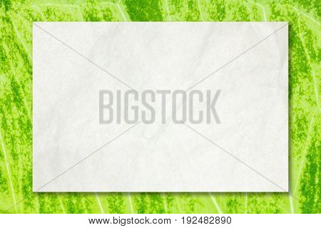 Recycled crumpled white paper with drop shadow on natural green leaf background for business, education and communication concept design.