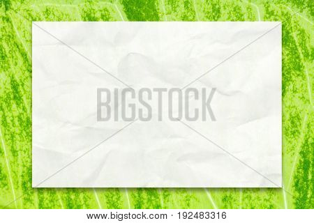 Crumpled white paper with drop shadow on natural green leaf background for business education and communication concept design.
