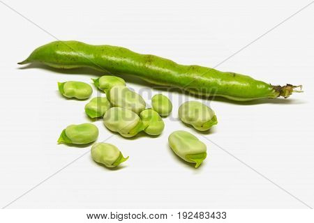 fresh broad bean isolated over a white background