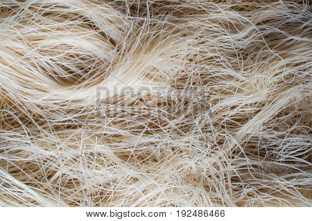 Asian dried glass Noodles in Vietnam. Background photo.