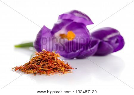 Crocus Flower  With  Heap Of Saffron Isolated On White Background