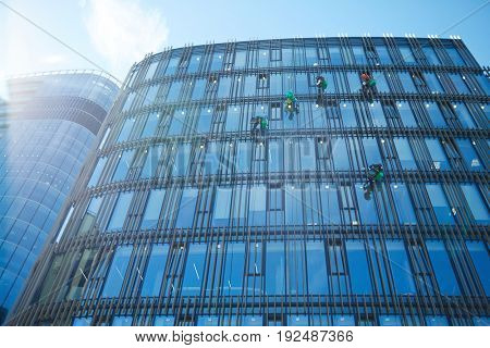 Several climbers washing windows of modern office center