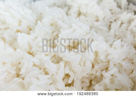 Close Up View Of White Cooked Rice selective focus