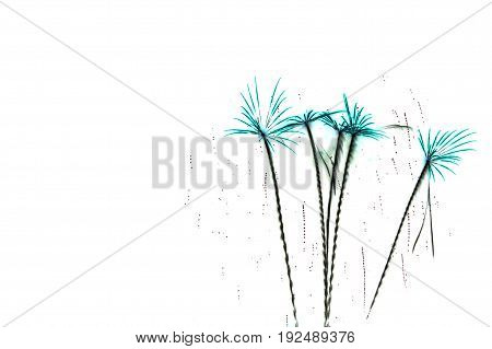 Colorful fireworks celebration and the twilight sky on white backdrop