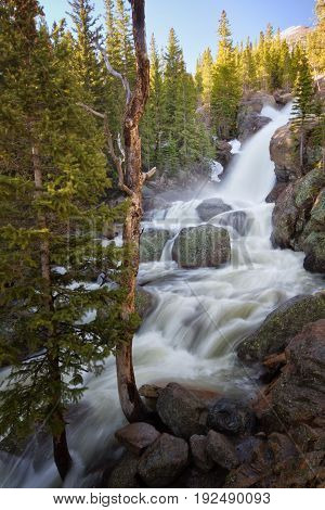 Spring snow melt along Alberta Falls in Rocky Mountain National Park in Estes Park Colorado
