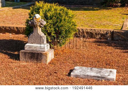 Atlanta, Georgia, USA - December 22, 2016: Two small tombstones and bush on the ground closeup on the Oakland Cemetery in sunny autumn day