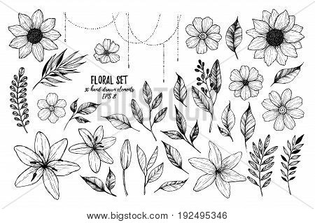 Vector Illustrations - Floral Set (flowers, Leaves And Branches). 30 Hand Drawn Design Elements In S