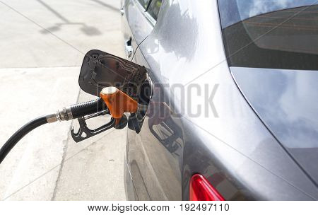 Car deep gray color refueling gasoline at gasstation
