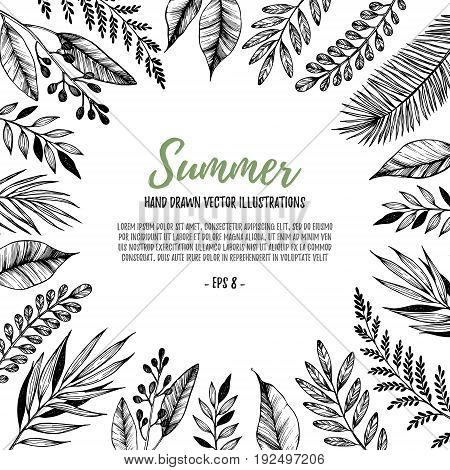 Hand Drawn Vector Illustration. Square Frame With Leaves And Branches. Perfect For Wedding Invitatio