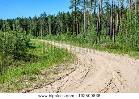 Empty Road In The Countryside In Summer
