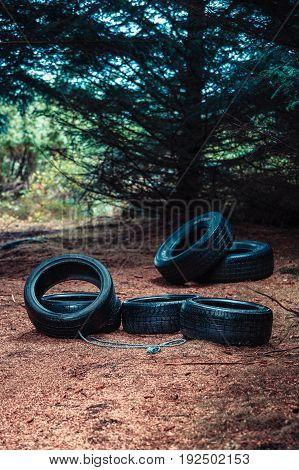 Many Old Car Tires Lying In Forest