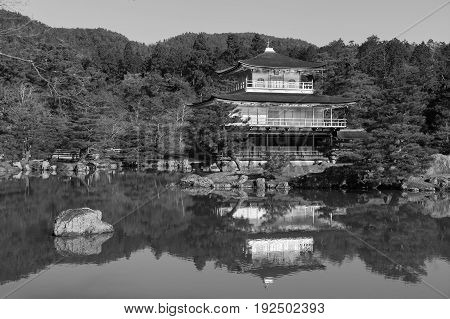 Black and White Golden Pavilion in Japanes traditional Garden. Kinkakuji Templekyoto Japan.
