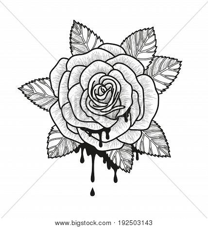 Rose flower monochrome vector illustration. Beautiful rose isolated on white background. Element for design of tattoo