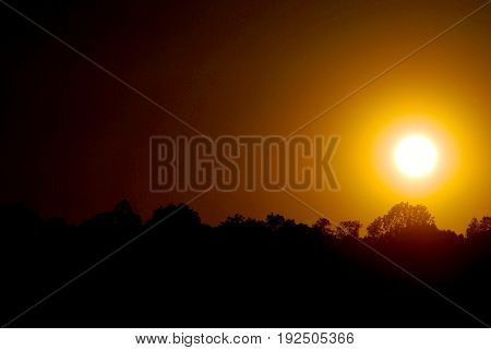 Beautiful contrast captured during the sunset over the trees forming a silhouette bright sunshine, radial brightness