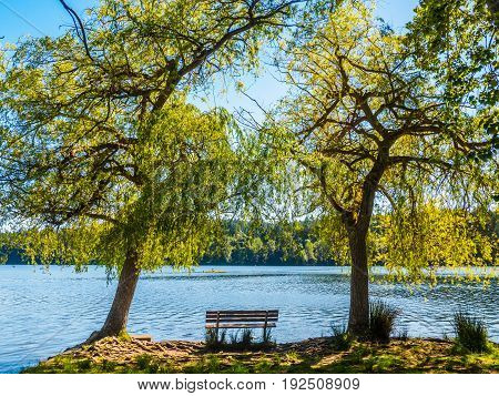 Bench overlooking a lake between two large trees canoe passing by